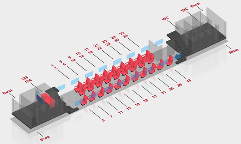 Схема вагона поезда Воронеж-Москва: 1 класс 1 этаж